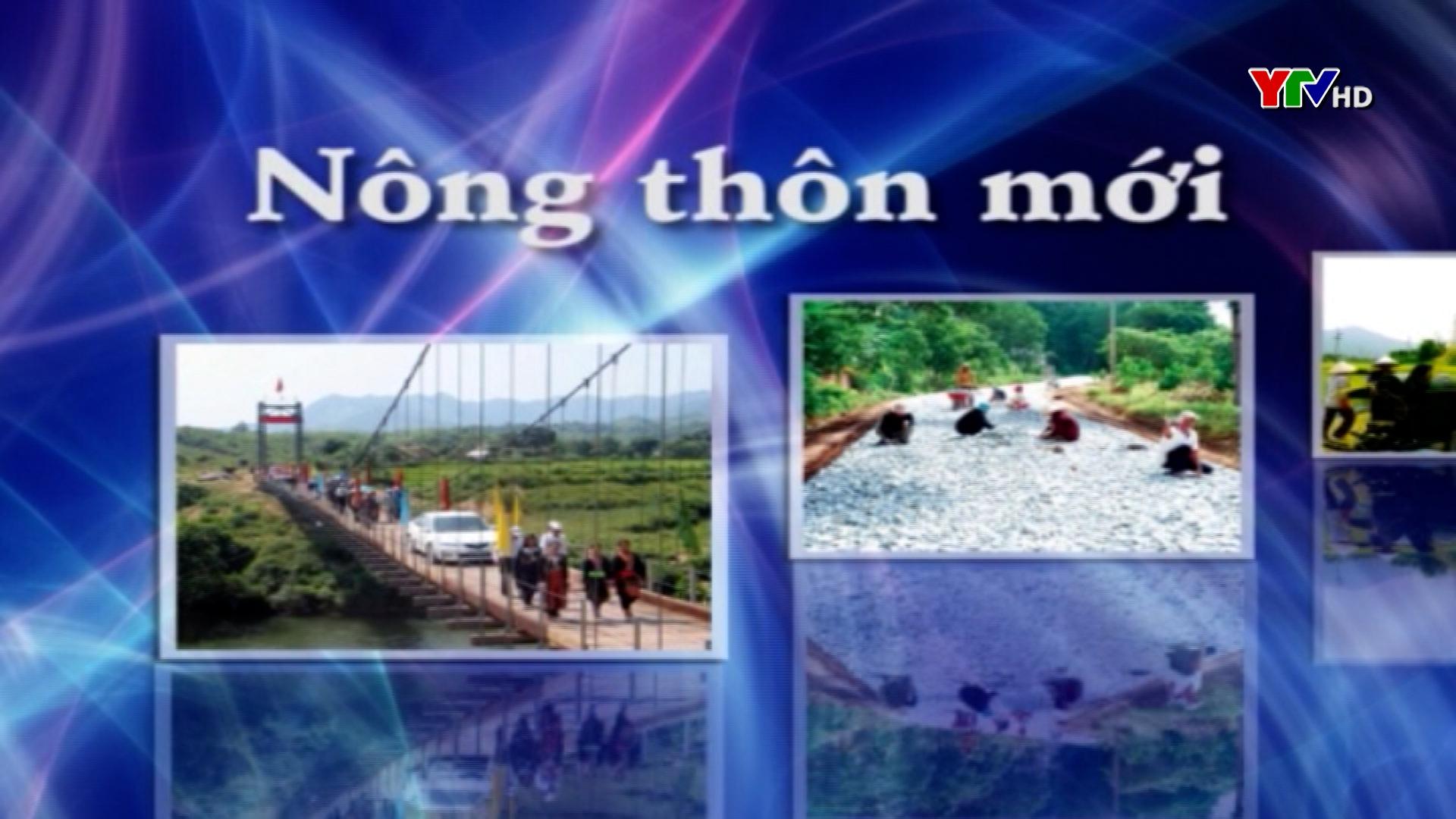 Xã Đào Thịnh, huyện Trấn Yên tập trung xây dựng quế hữu cơ
