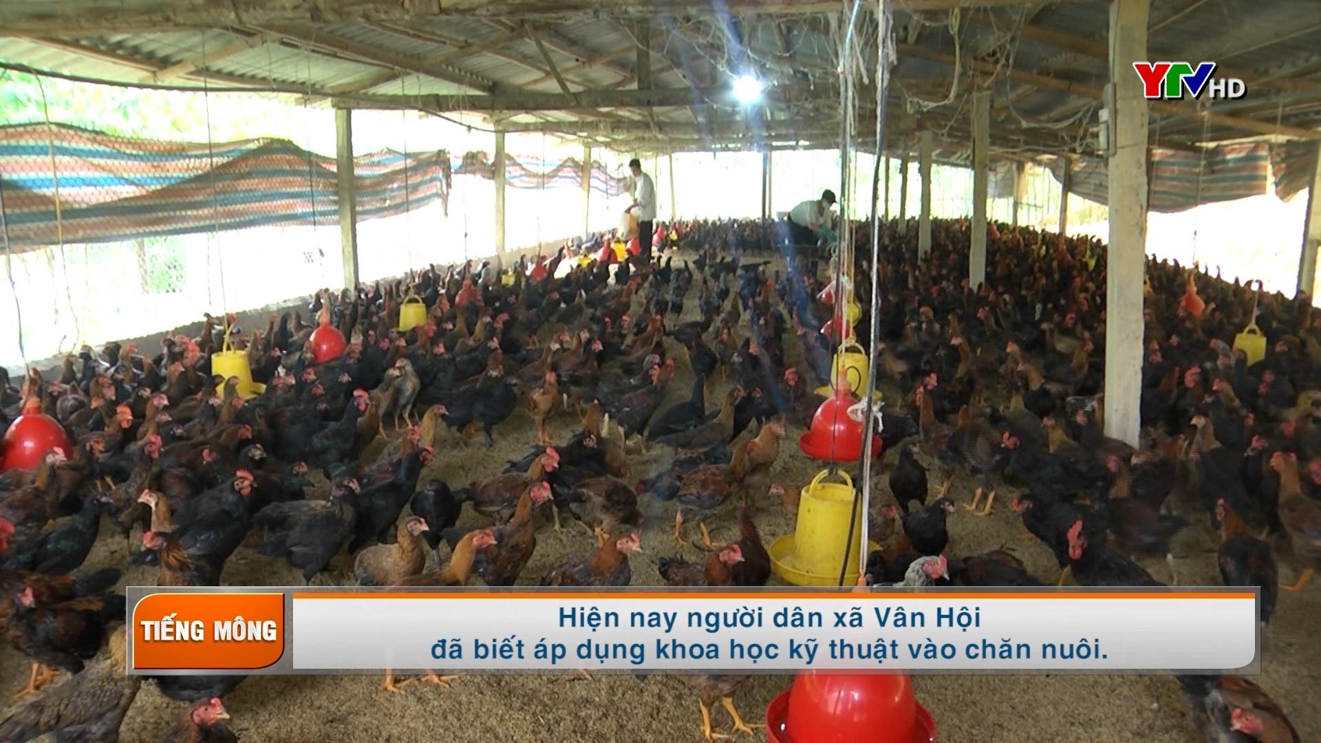 Tạp chí truyền hình tiếng Mông số 6 tháng 10 năm 2020